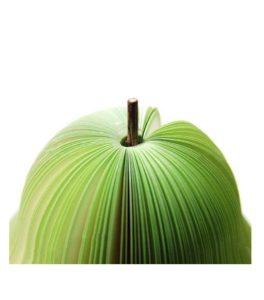 Тетр ябълка